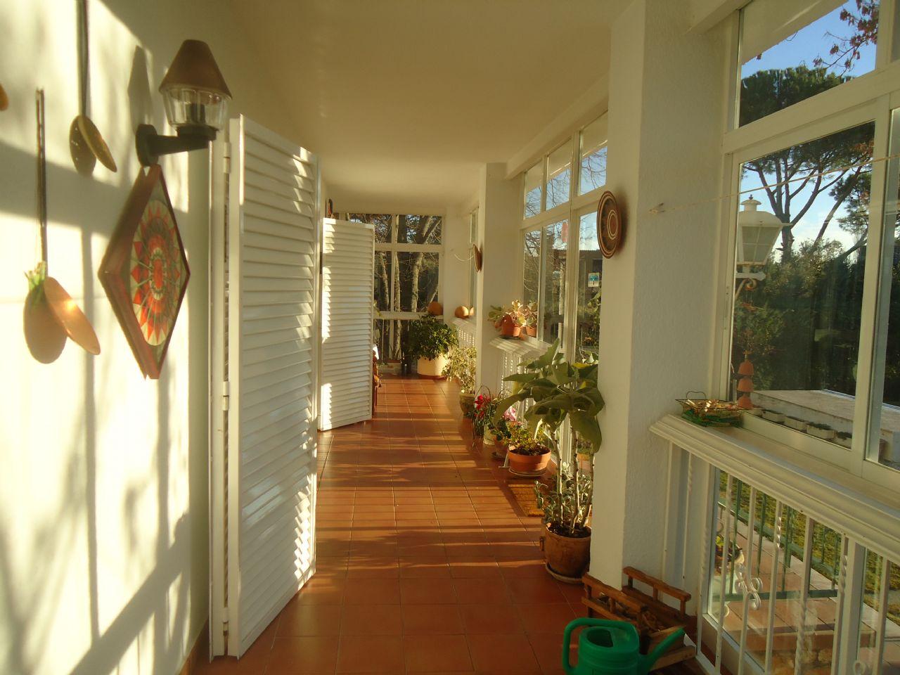 Casa / Chalet en Fuente el Saz de Jarama, finca del pico, venta