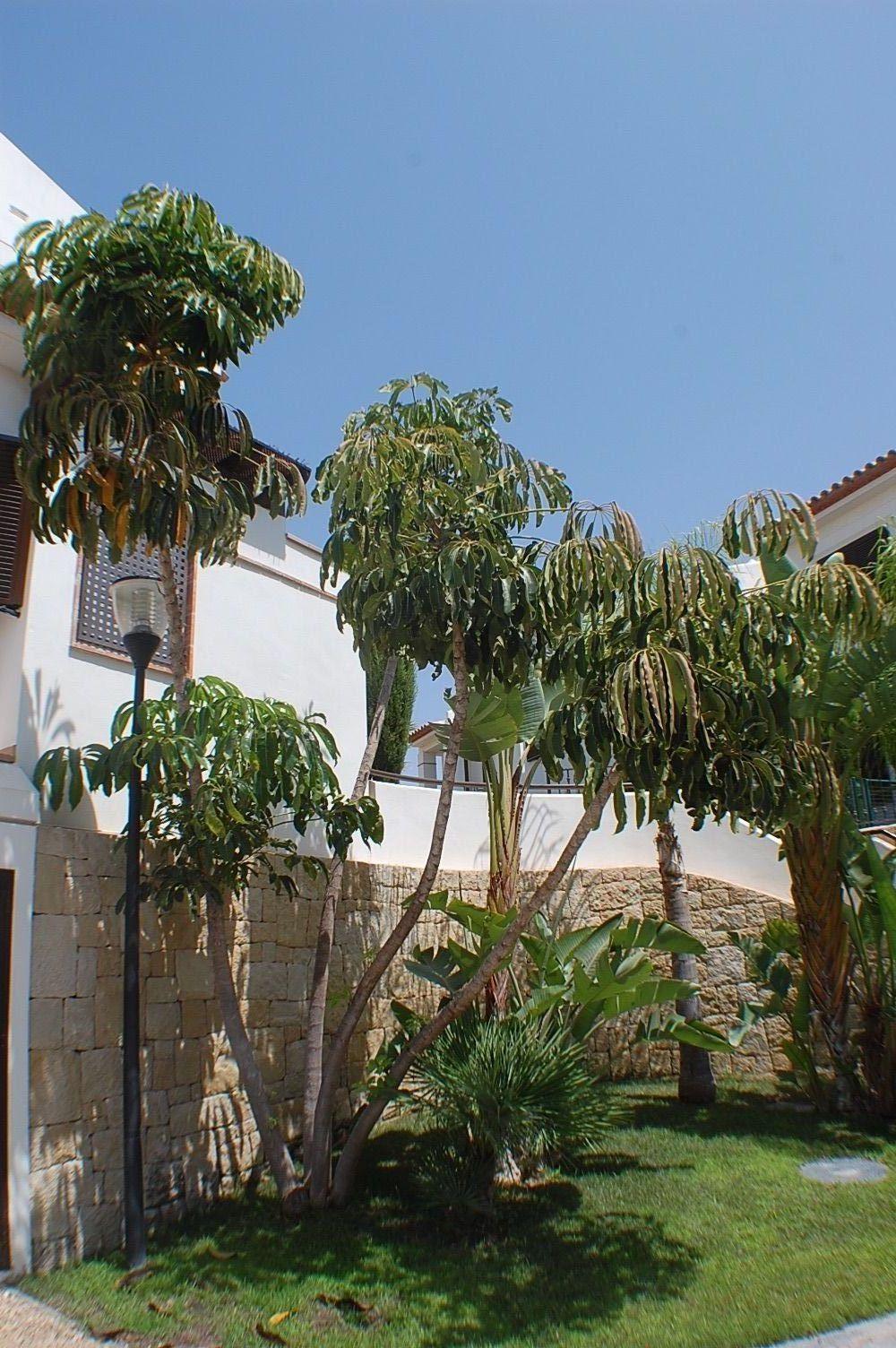Casa adosada en Finestrat, SIERRA CORTINA, venta
