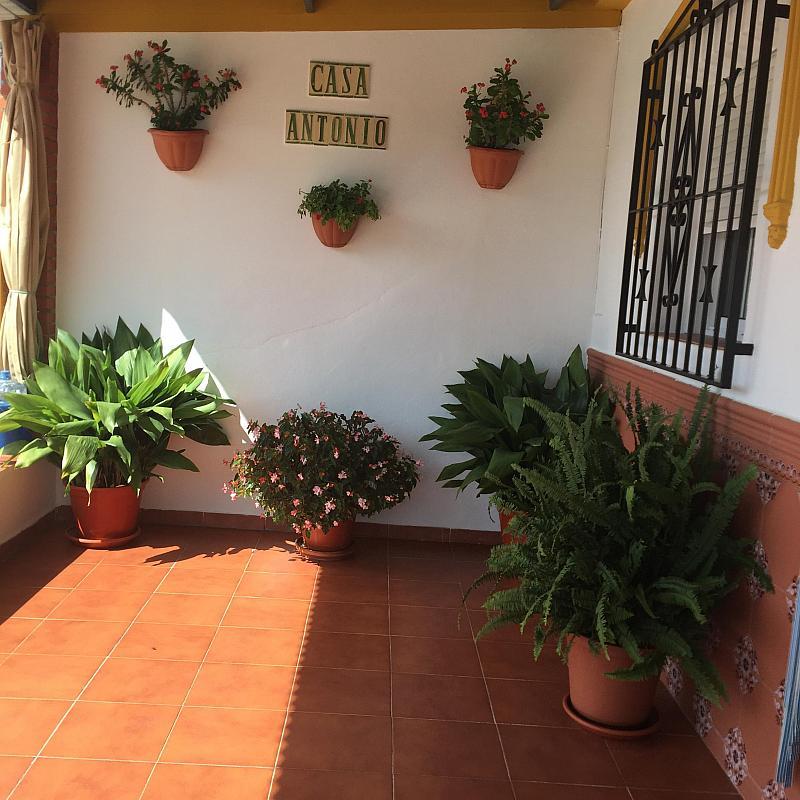 Casa de campo en Vélez-Málaga, venta