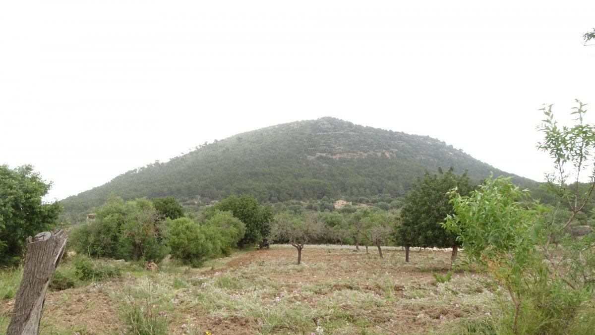 Parcela en Llucmajor, Llucmajor Rural, venta