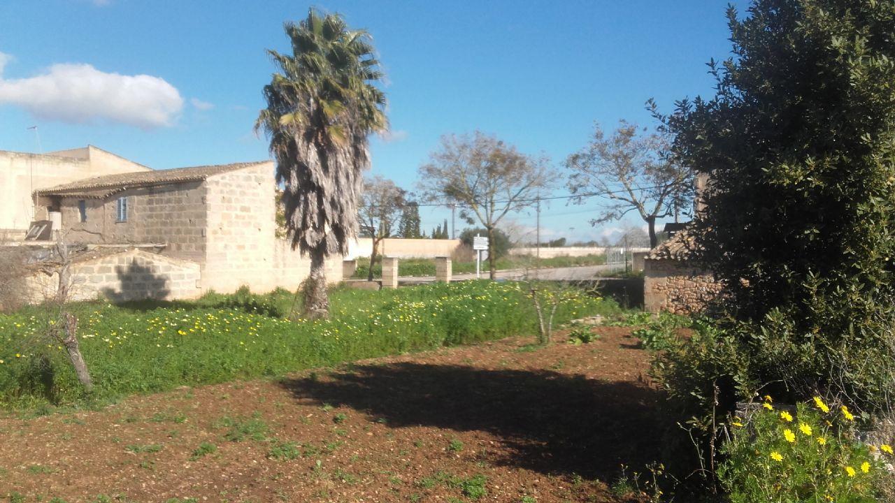 Urban Plot à Algaida, vente