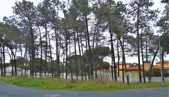 Parcela en Isla Cristina