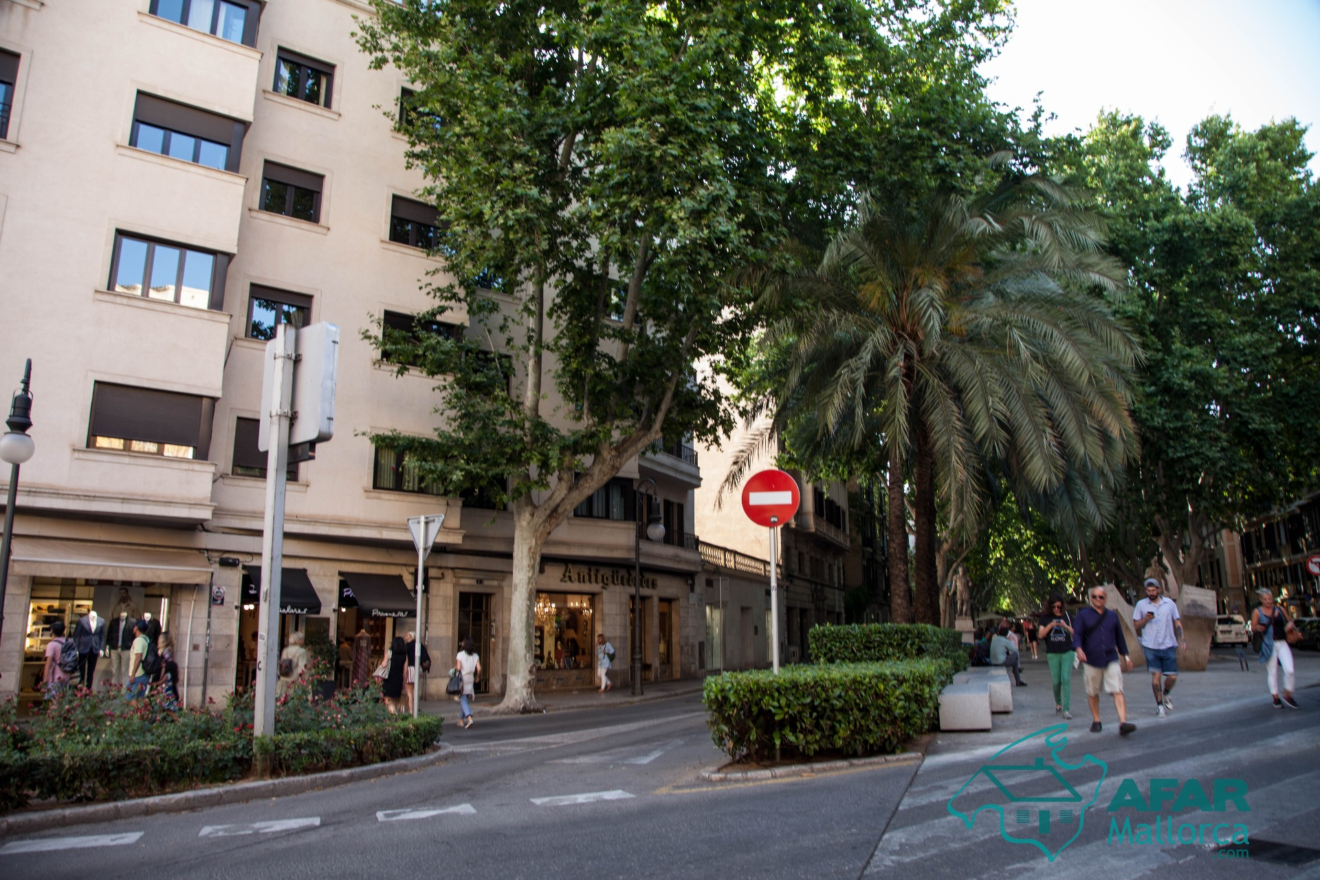 Piso en Palma, venta