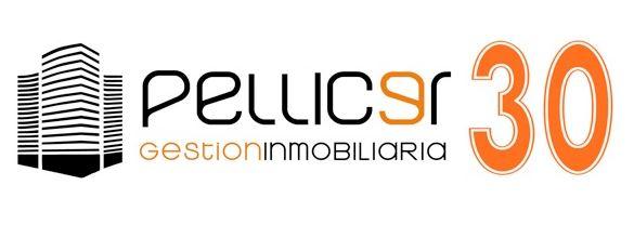 logo-pellicer30-_2.jpg