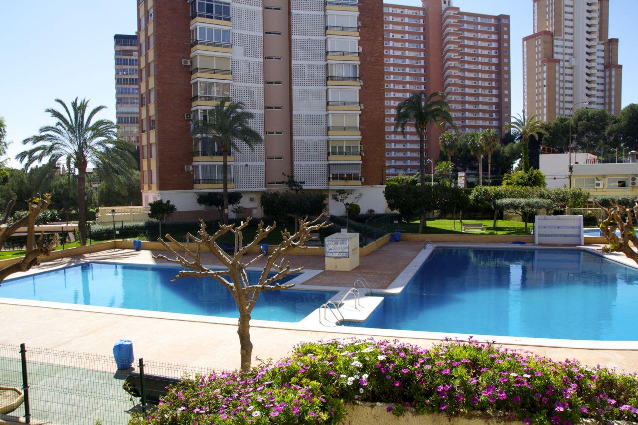 Apartamento en Benidorm, CENTRO - PONIENTE, alquiler