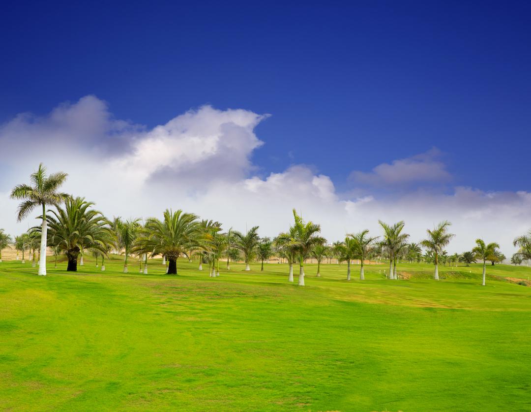 Mejores campos de golf de Gran Canaria