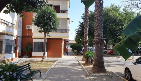 Local comercial en Sevilla