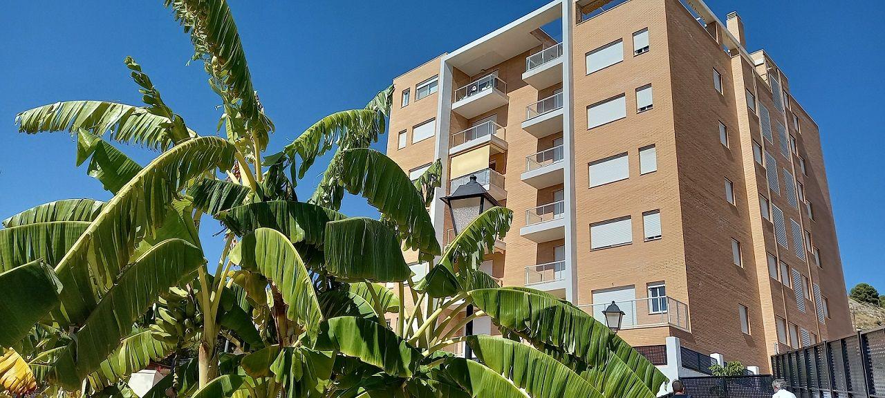 Appartement à Jijona/Xixona, vente