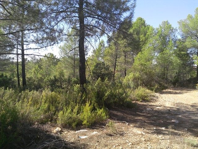 Countryside property in La Pesquera, Pantano de Contreras, for sale