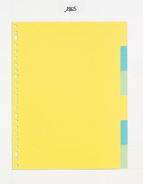 Class'ex tabbladen 6 tabs (zonder inlegvel), 23-gaatsperforatie, karton, geassorteerde kleuren