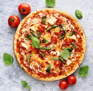 Les meilleurs fours électriques portables à pizzapizza