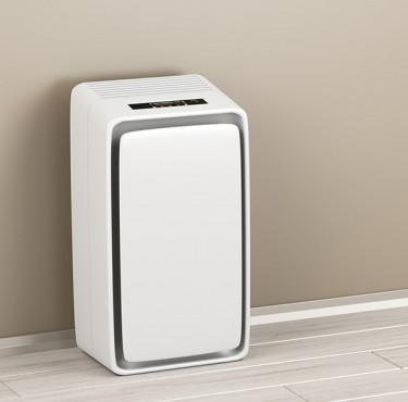 Déshumidificateur d'air pour la maison, comment le choisir?Déshumidificateur d'air : comment le choisir