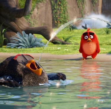 Les meilleurs goodies Angry Birds pour la sortie de Copains comme cochonsAngry Birds