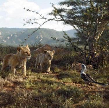 Des goodies pour célébrer la sortie DVD du Roi LionLe Roi Lion