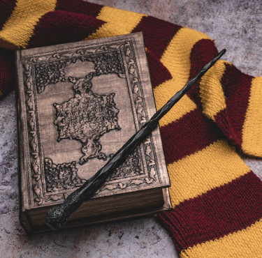 Les goodies incontournables Harry Potter pour tous les moldusEcharpe Harry Potter