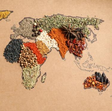 Des livres de recettes pour faire voyager les sensmap monde