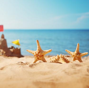Les meilleurs jeux de plage pour toute la familleJeux de plage