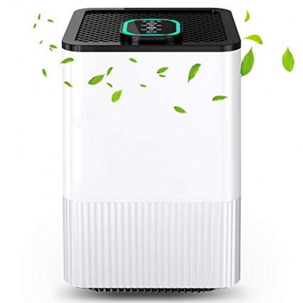 Le purificateur d'air ioniseur au meilleur rapport qualité-prix