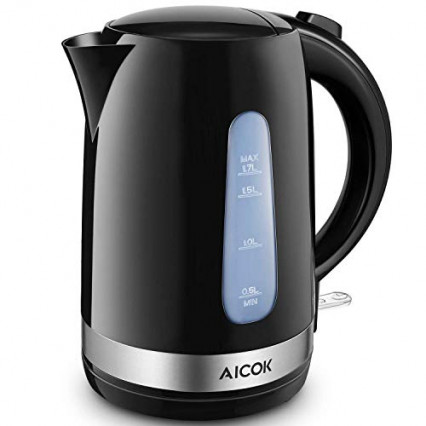 Une bouilloire pour des thés minutes