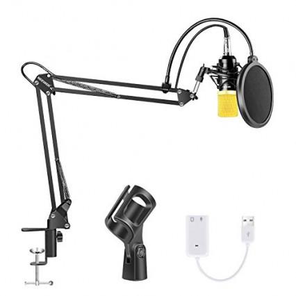 Le Neewer NW-700, le micro et son bras