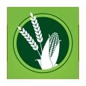 Onze nieuwe plantaardige Eco Friendly Case