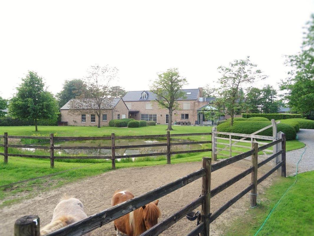 Foto 4 : Villa te 2500 Koningshooikt (België) - Prijs Prijs op aanvraag