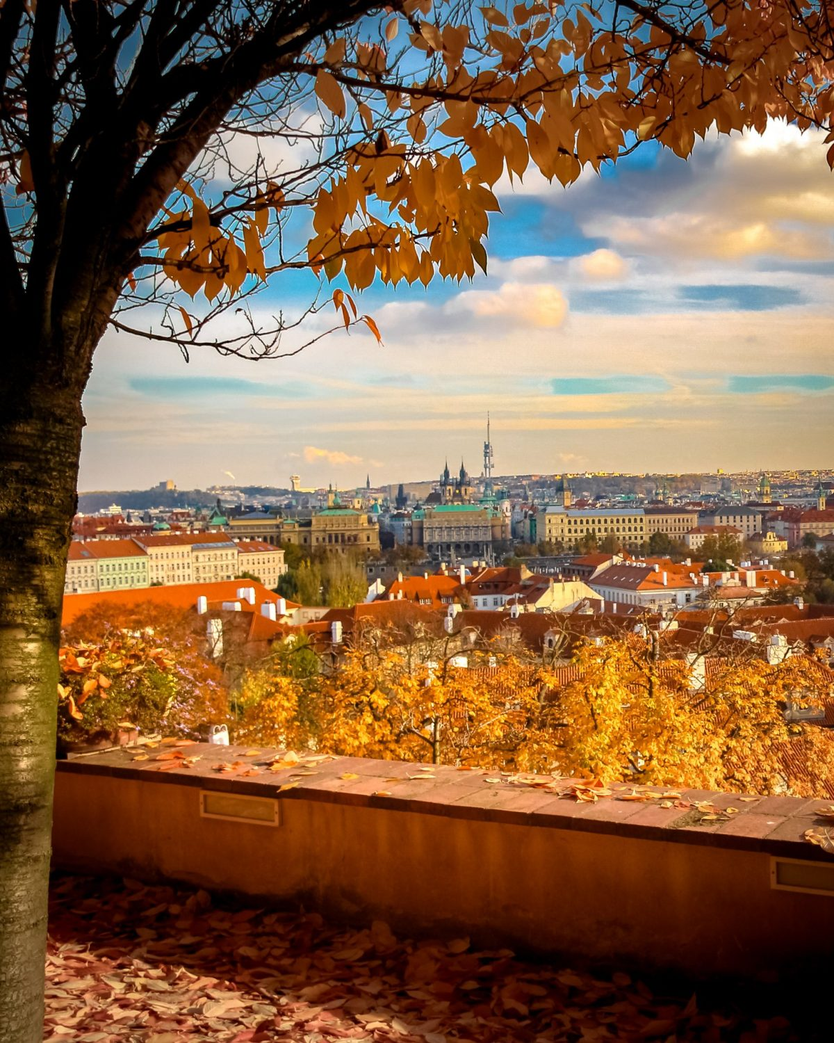 View of the city from Prague Castle, Castle Gardens