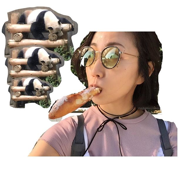 「木南晴夏 パン  インスタグラム」の画像検索結果