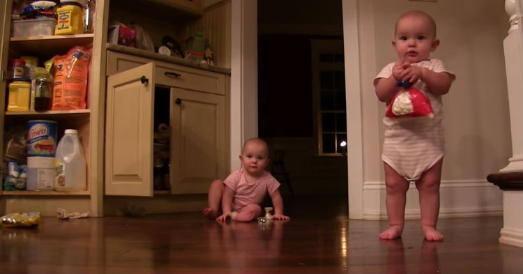 btyd 1 - Twins Find A Bag Of Marshmallows And Express Flood Of Joy