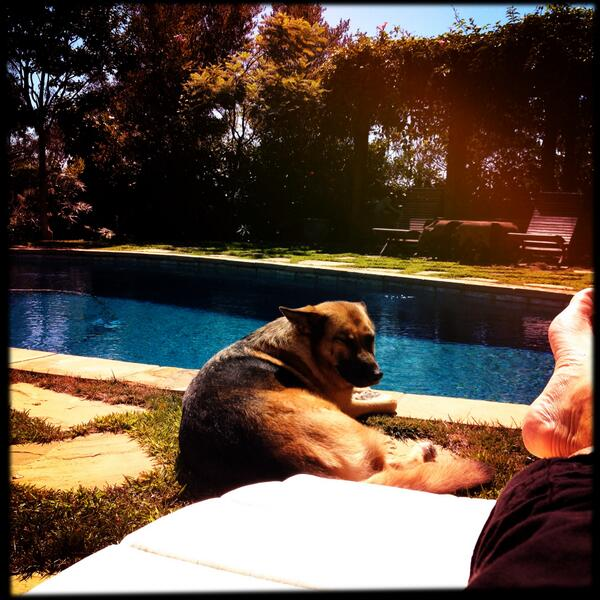 john stamos and his dog 2 1 - John Stamos Shares Photos Of His Beloved Dog After The Dog Dies