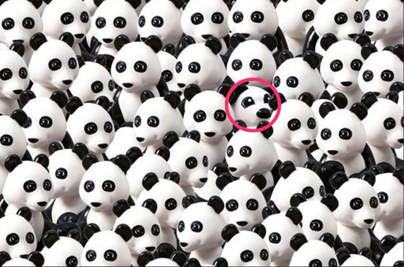 dog lego instagram jpg et slack et notes - Mais où est le petit toutou ?