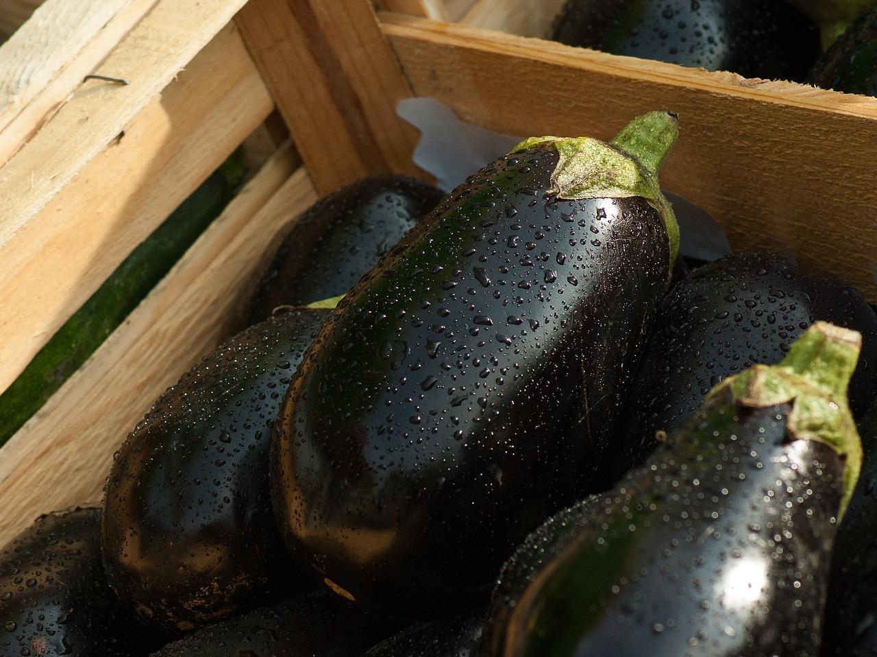 eggplant 1707629 1280 - 女がオナニーによく使う野菜ランキングTOP6