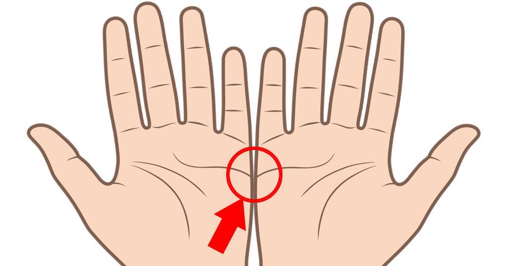 0 1 1 - 両手を広げれば、あなたの「結婚線」が見える