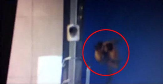 """00380 - """"속옷만 입고 있었는데 '드론'이 몰카를 찍었어요""""...경찰 뒷북 수사에 '분노'"""