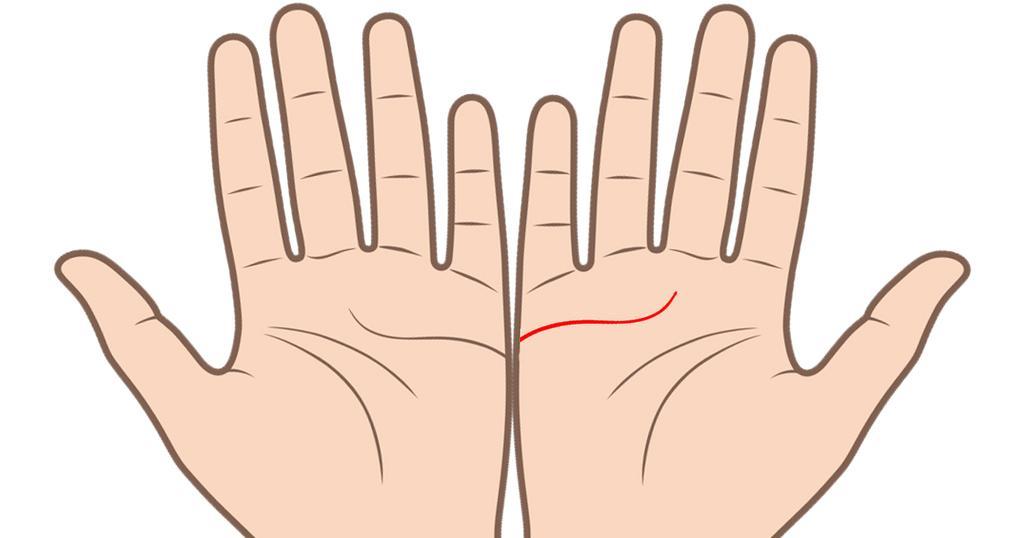 1 1 2 - 両手を広げれば、あなたの「結婚線」が見える