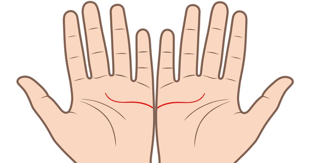 2 1 1 - 両手を広げれば、あなたの「結婚線」が見える