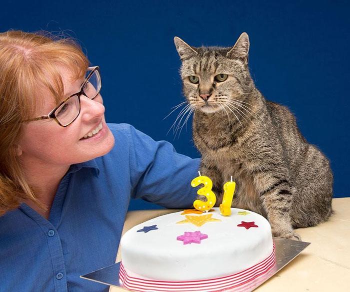 31 year old cat nutmeg 10 - 생일 맞은 31살 고양이... '못마땅한 표정'을 짓는 이유는?
