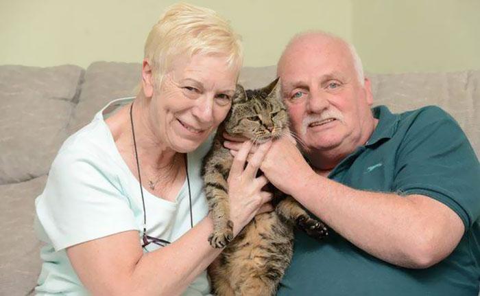 31 year old cat nutmeg 9 - 생일 맞은 31살 고양이... '못마땅한 표정'을 짓는 이유는?