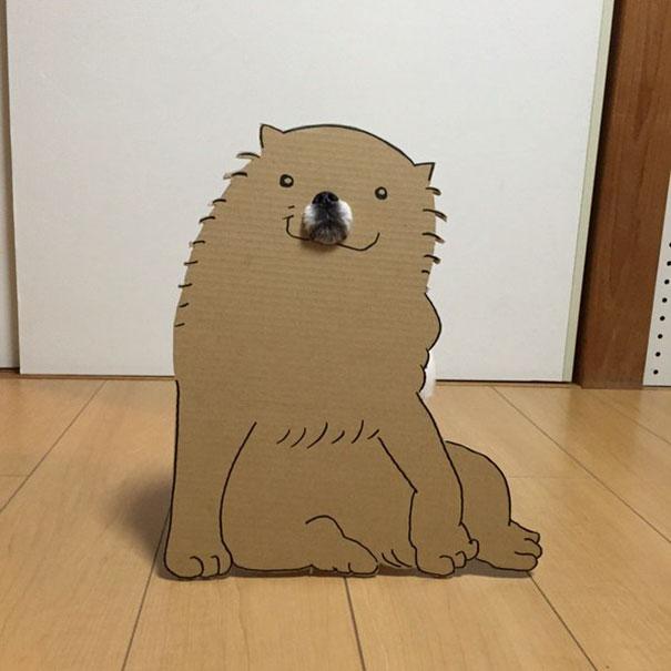dog costume cardboard cutouts myouonnin 19 580f54122d248  605 - 自分のチワワのペットと素晴らしいコスプレーをする女性