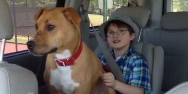 eca09cebaaa9 ec9786ec9d8c 1 18 - 학대받았던 강아지와 자폐증 소년의 아름다운 우정