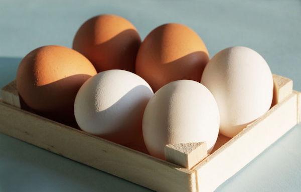 gettyimagesbank - 하루에 '달걀' 2개씩 먹으면 우리 몸에 일어나는 놀라운 변화 7가지