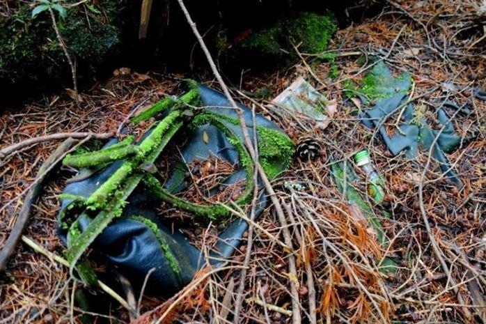 1708260713 - 한 번 들어가면 나올 수 없는 죽음의 숲 '주카이'... 일본의 '자살명소'