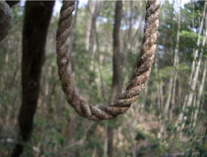 1708260714 - 한 번 들어가면 나올 수 없는 죽음의 숲 '주카이'... 일본의 '자살명소'