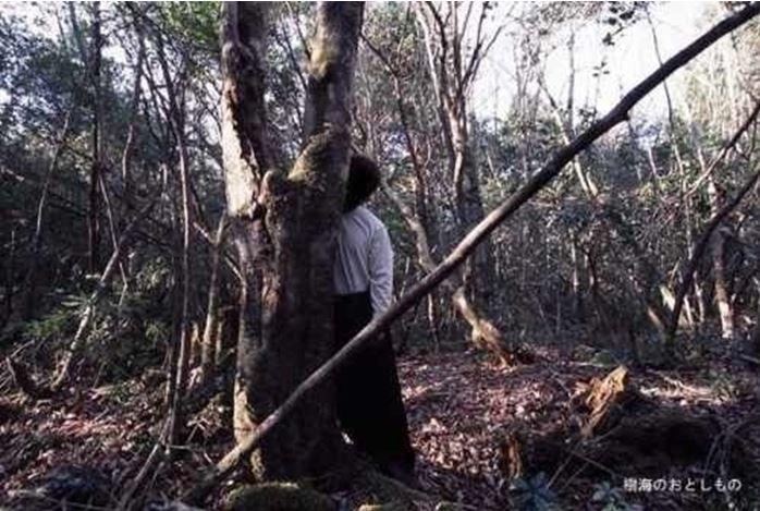 1708260715 - 한 번 들어가면 나올 수 없는 죽음의 숲 '주카이'... 일본의 '자살명소'