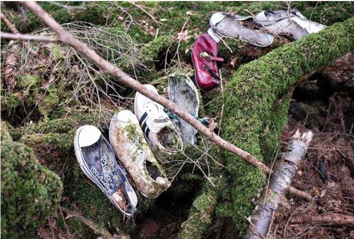 1708260716 - 한 번 들어가면 나올 수 없는 죽음의 숲 '주카이'... 일본의 '자살명소'