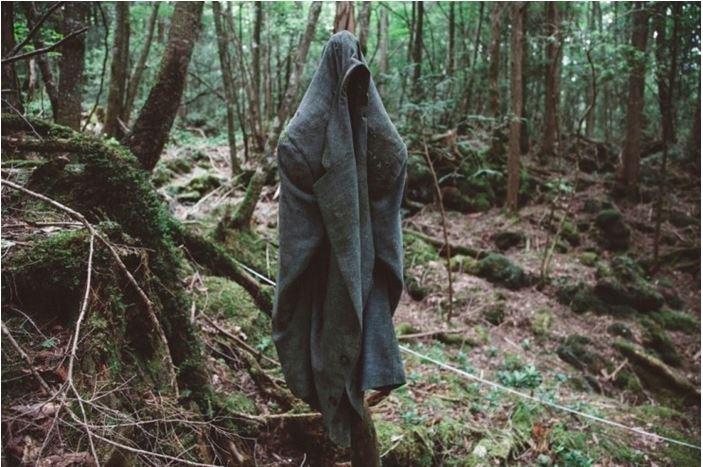 1708260717 - 한 번 들어가면 나올 수 없는 죽음의 숲 '주카이'... 일본의 '자살명소'