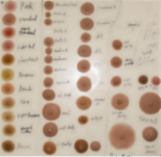 4 1 - オーダーメイド「セックスドール」製作過程を写真で見る