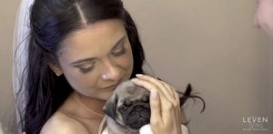 bride pug puppy 1500 1500x733 300x147 - Groom Suddenly Leaves Wedding Hall, And Bride Has No Idea Why. Soon, She Begins To Tear Up