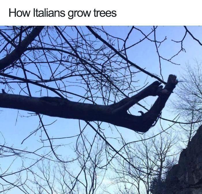 jokes about italians 100 59773fecc83c9  700 - 이탈리아 사람이 '손'이 없으면 말을 못하는 이유 (사진)