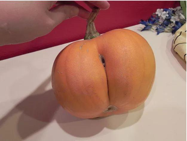 1709030103 - [후방주의!] 기분이 이상해질 만큼 야한 '19금' 과일과 야채 (사진 19장)